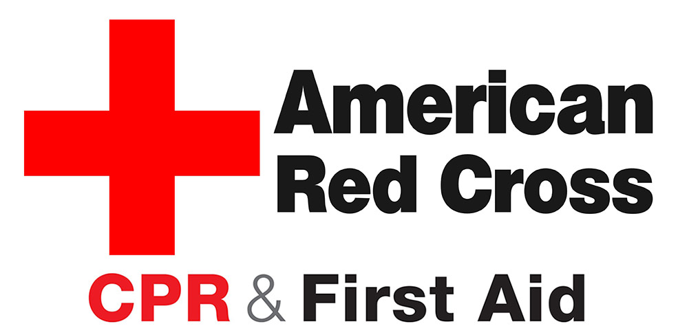 red cross first aid book pdf