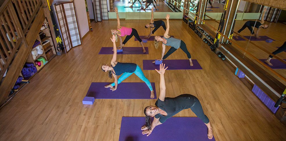 Dynamic Vinyasa Flow Yoga